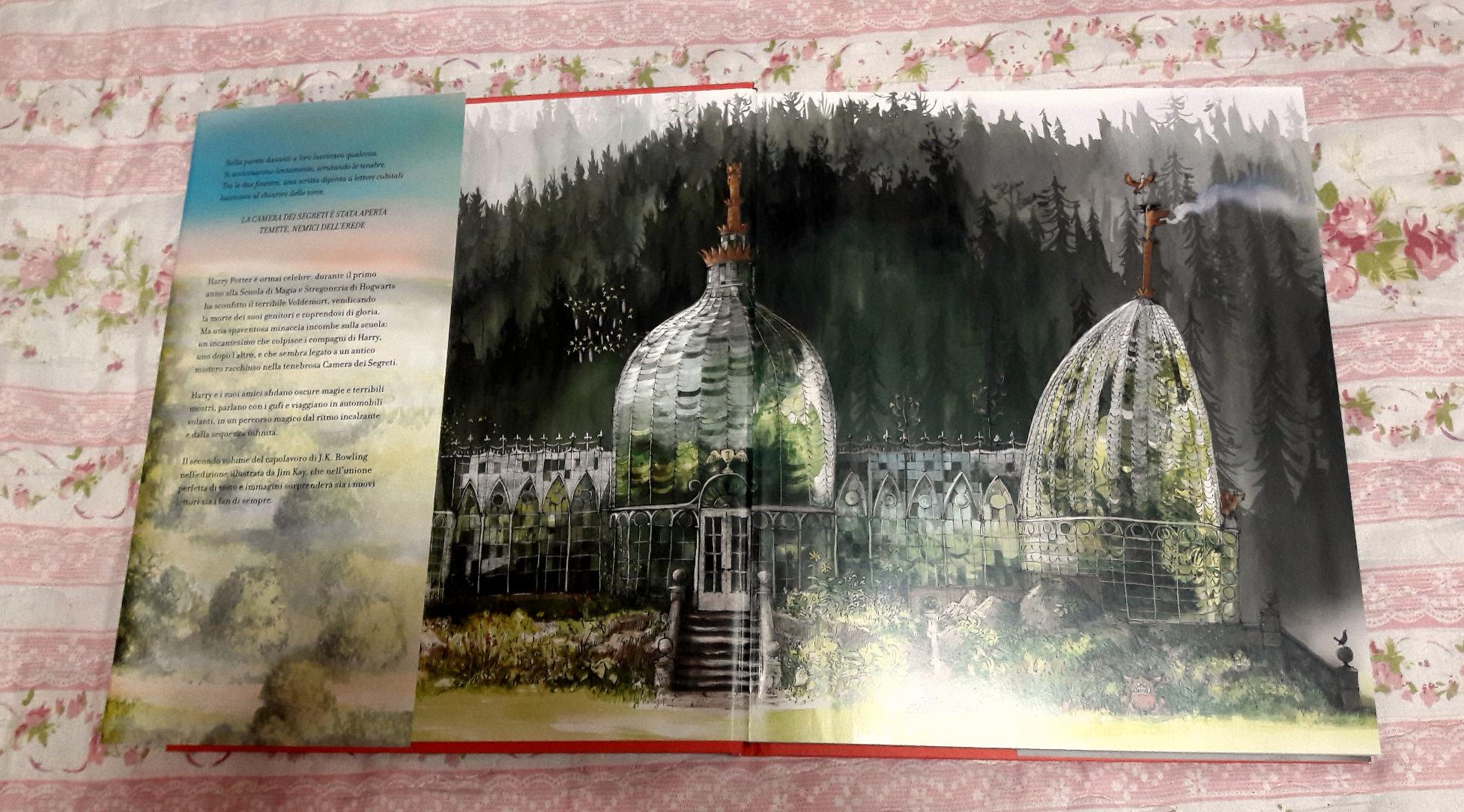 Harry Potter Camera Segreti Illustrato : Il magico mondo di harry potter libri e gadget figli moderni